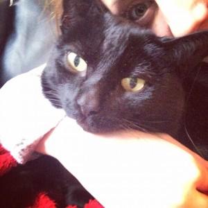 Sooty & I celebrating National Hug a Cat Day
